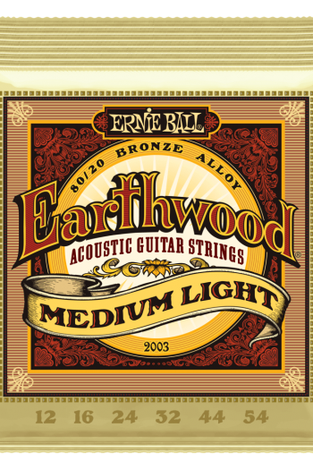 ernie ball 2003 earthwood medium light 12-54